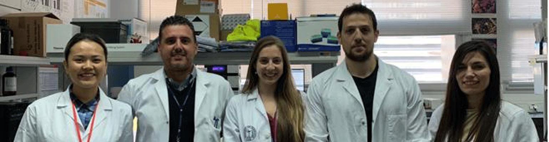 Crean piel artificial con células madre para su uso inmediato en quemados